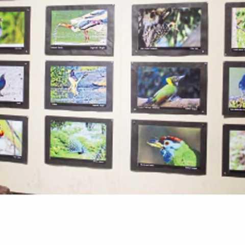 बालगंधर्व कलादालन - शटरबग्ज फोटोग्राफी क्लबने आयोजिलेले 'फोटो व्हिजन' प्रदर्शन पाहताना रसिक.
